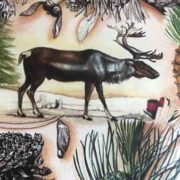 Reindeer-and-Acorn-1